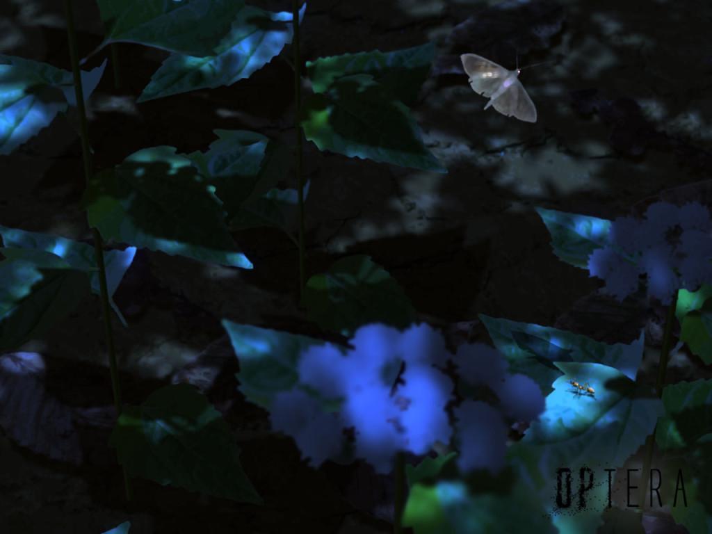 night_concept_01